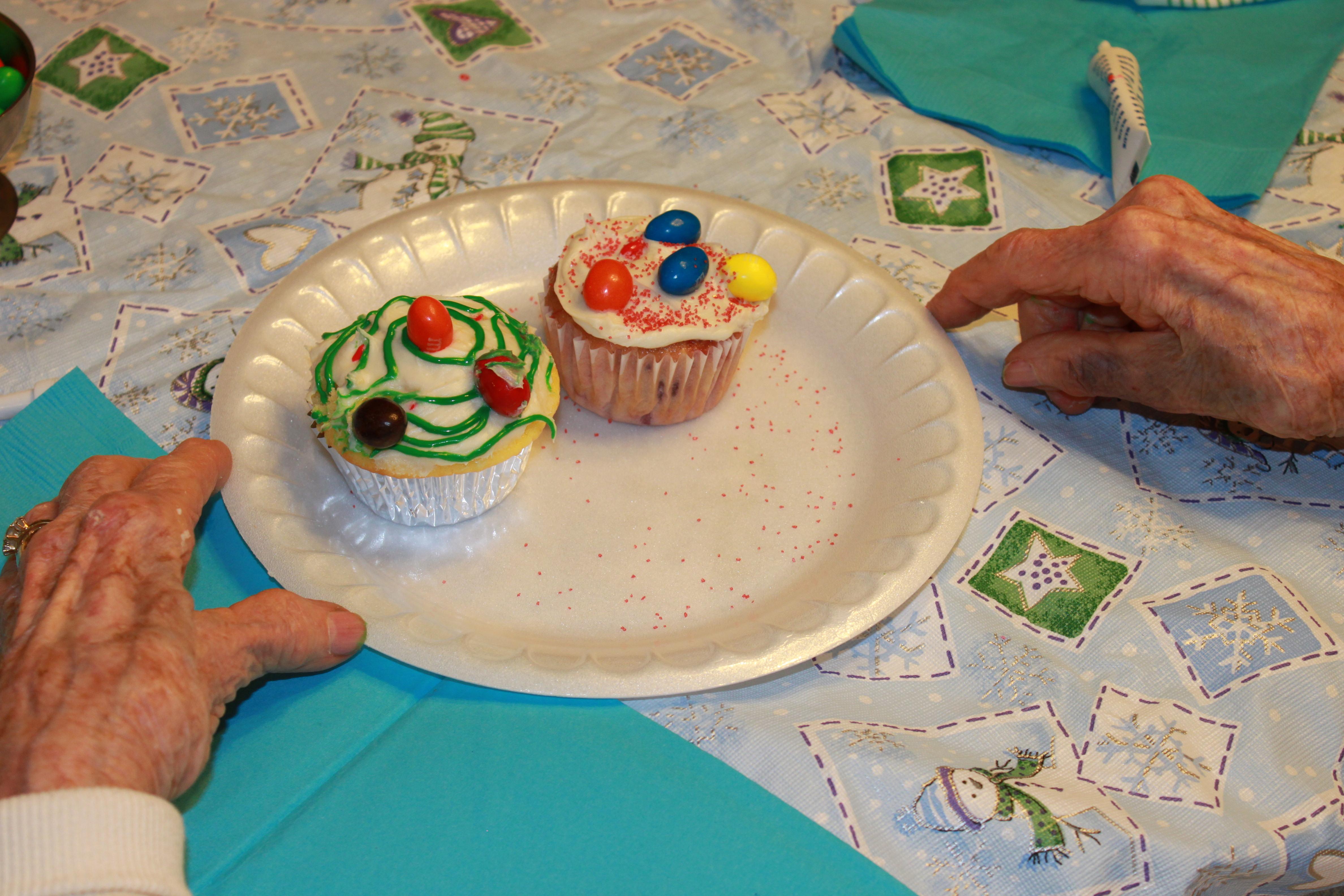Cupcake Decoration Activity